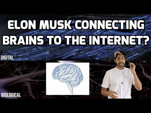 Why Does Elon Musk Want to Connect Brains to the Internet?
