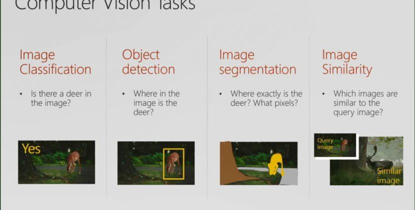 Building Image Classification Systems Using the Microsoft AI Platform