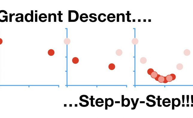 A Step-by-Step Look at Gradient Descent