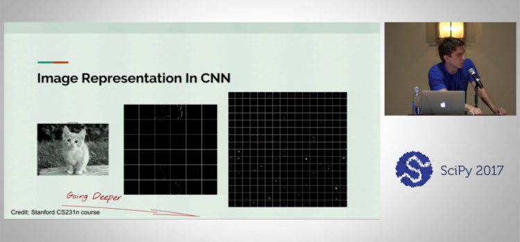 Fully Convolutional Networks for Image Segmentation